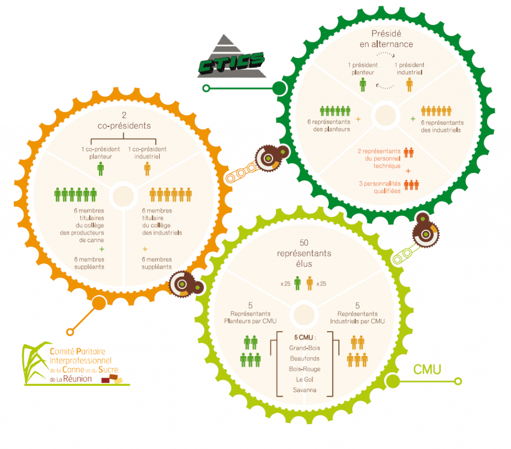 Schéma des différentes instances de gouvernance dans la filière Canne-Sucre à La Réunion